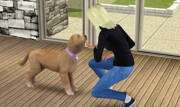 sharon-petting-abby